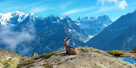 Atemberaubende Schweiz: Matterhorn, Brienzersee und Rheinfall