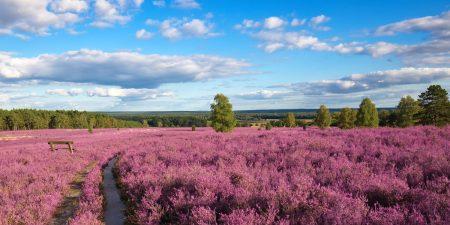 Alpen, Nordsee und Ostsee: Die schönsten Reiseziele in Deutschland