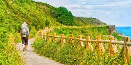 Jakobsweg, St. Olavsweg, Via Francigena: Die schönsten Pilgerwege der Welt
