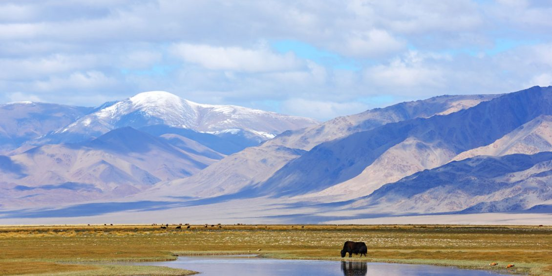Geheimtipp Mongolei