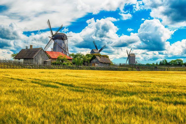 Windmühlen auf Saaremaa