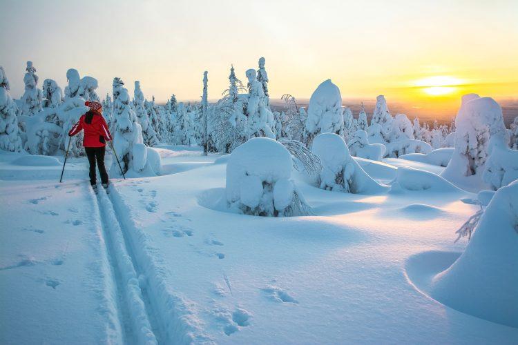 Unterwegs in der winterlichen finnischen Natur