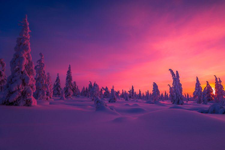 Faszinierende Farben am Winterhimmel