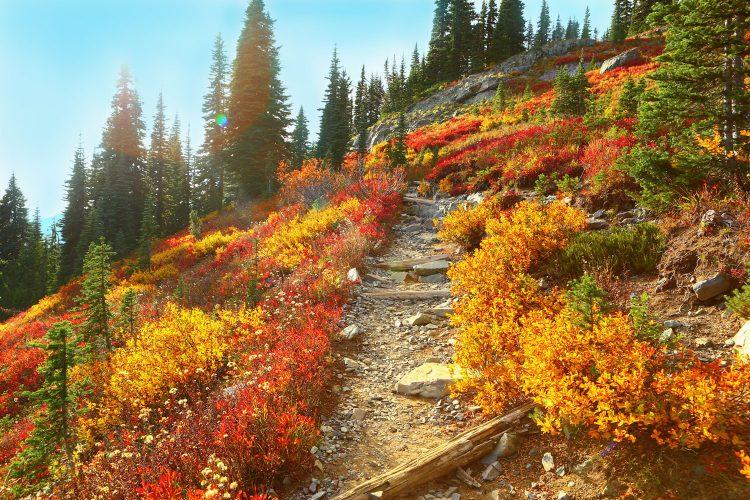 Tagestouren sind im Herbst am besten.