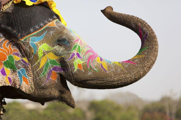In Indien sollte man niemandem etwas hinterherrufen