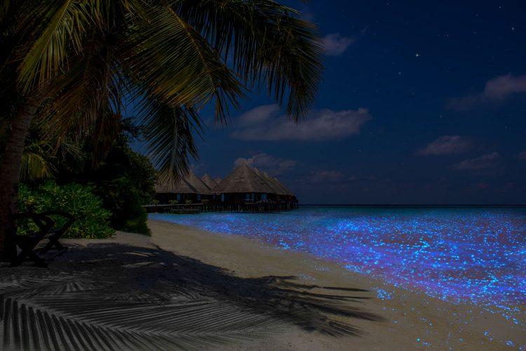 Glitzern des Meers und Strandes auf den Malediven