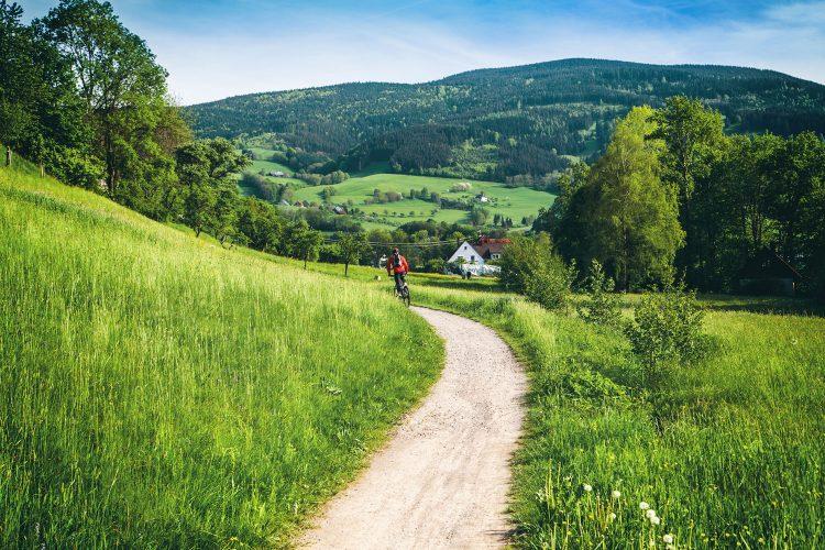 Der Schwarzwald eignet sich perfekt zum Biken