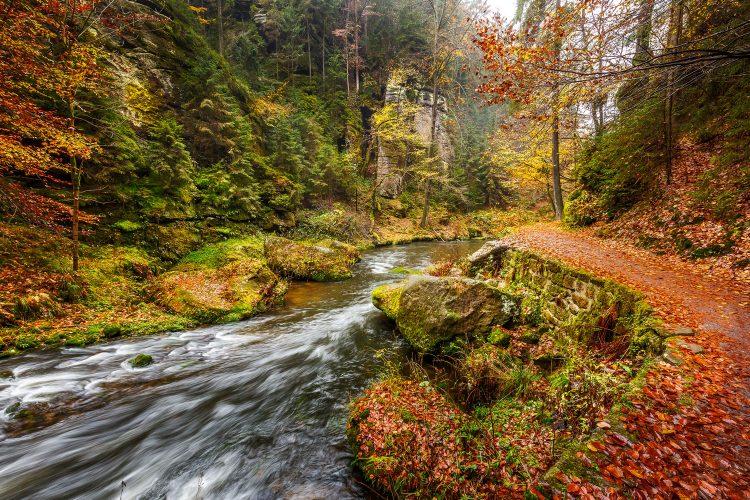 Wanderweg im Elbsandsteingebirge