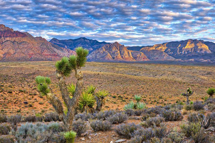 Der Mountain Loop Trail führt durch eine faszinierende Landschaft