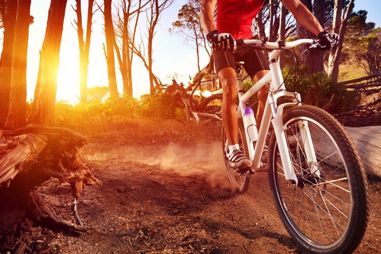 Mit dem Mountainbike über die Insel