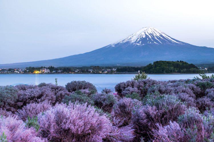 Kawaguchi-See vor dem Fuji