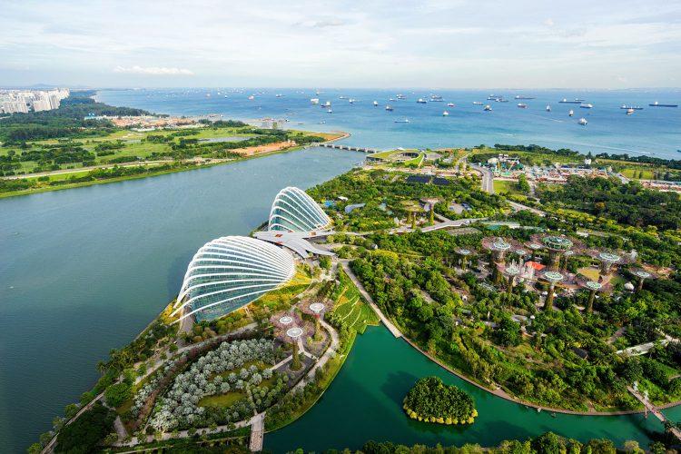 Blick auf Singapurs grüne Lunge: Gardens by the Bay