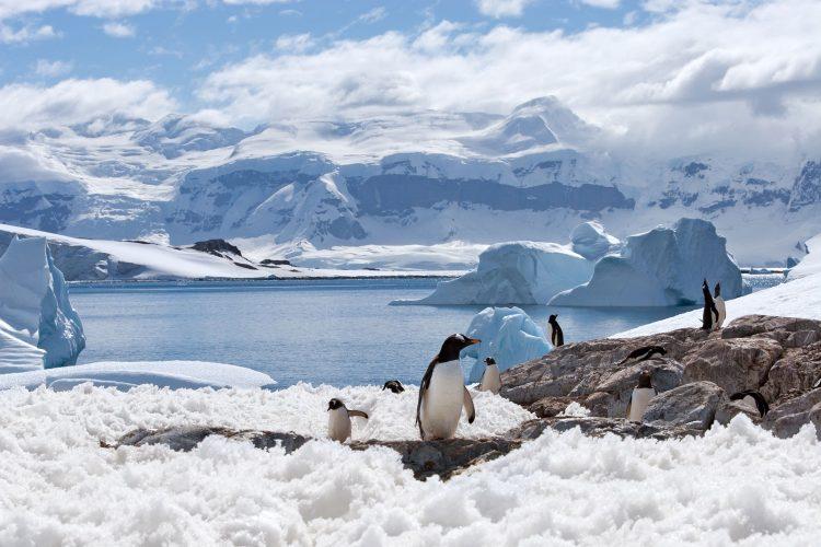 Durchs ewige Eis der Antarktis
