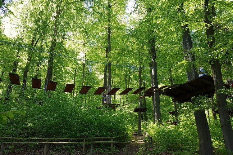 Im Treetopwalk Kellerwald-Edersee kann man auch über wackelige Hängebrücken klettern