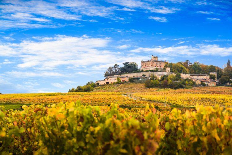 Weinbaugebiet Burgund